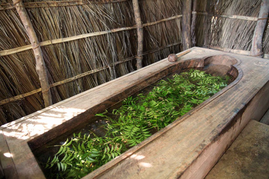 Neem leaves in Ulpotha Ayurveda bath Sri Lanka