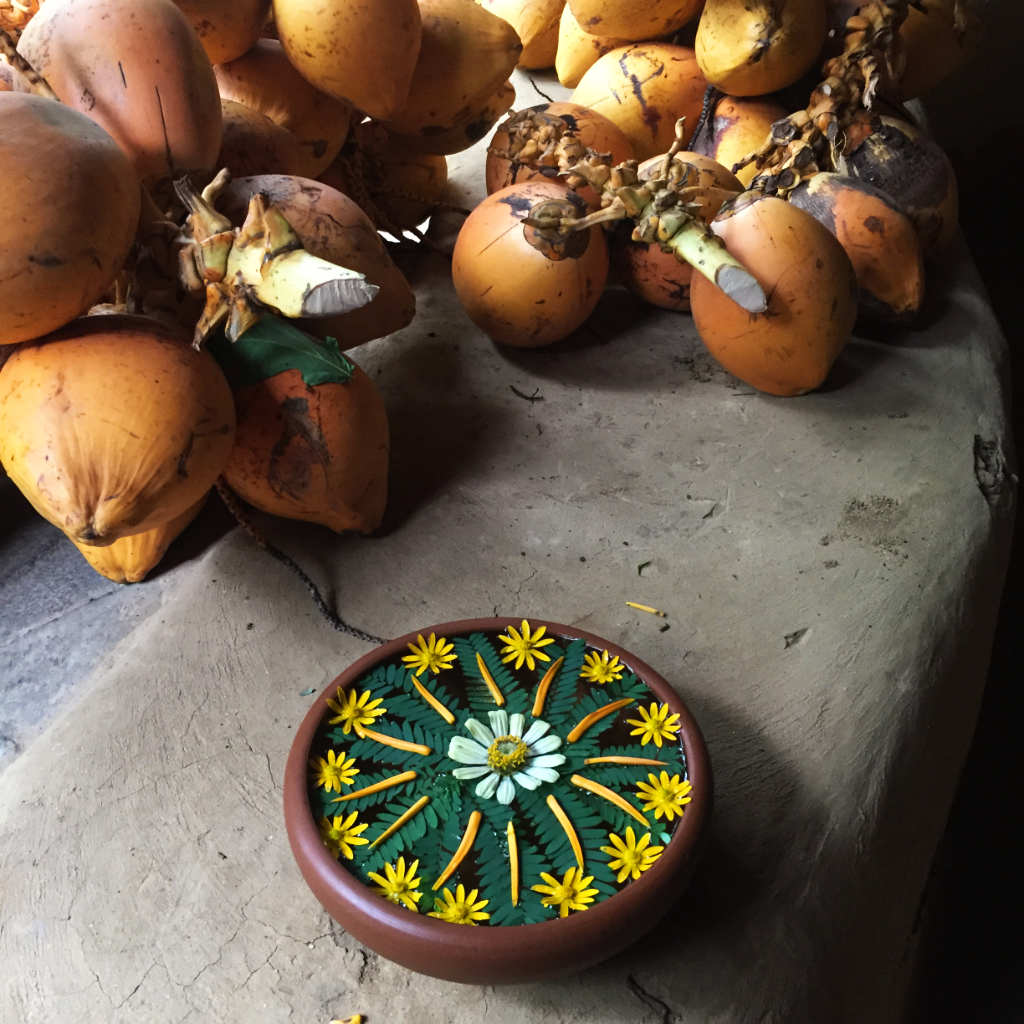 Ulpotha coconut water